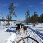 Zweeds Lapland: Claire gaat op de Lappen, deel 1